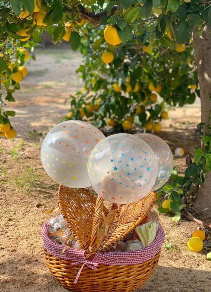 סלסלת פיקניק ליום הולדת