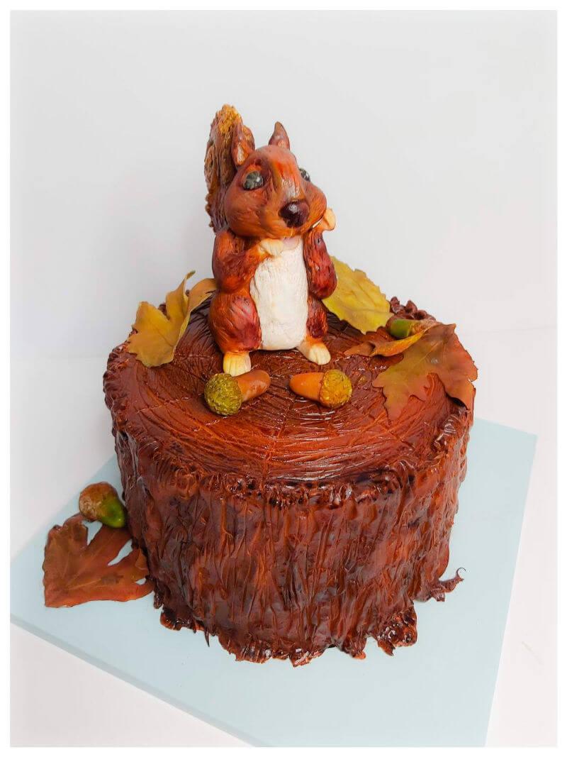 עוגה מעוצבת חיות עם סנאי