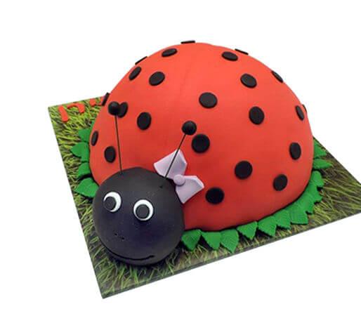 עוגת חיות חיפושית מבצק סוכר