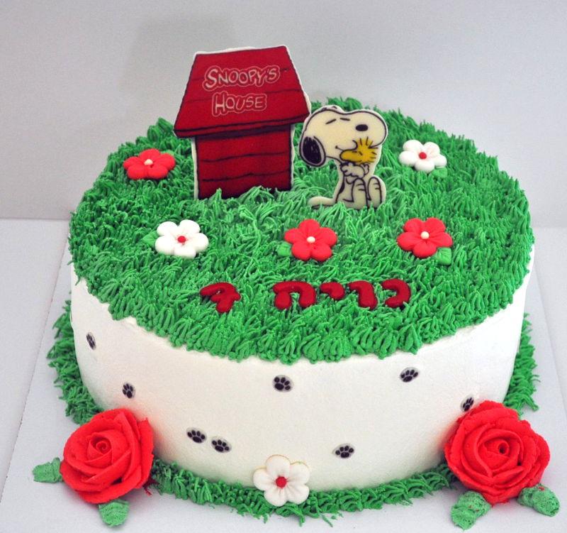 עוגת יום הולדת זילוף סנופי