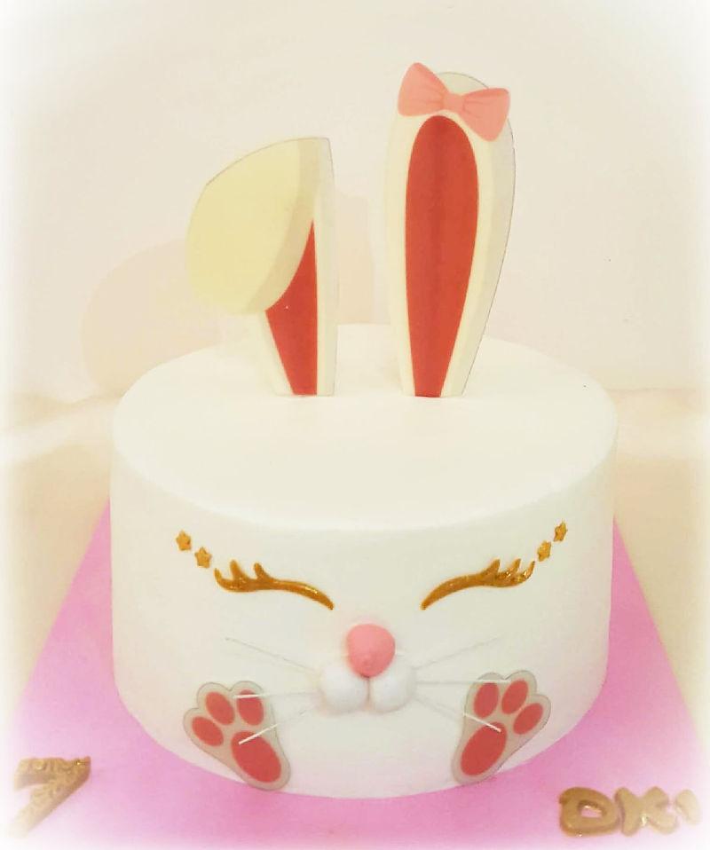 עוגת שפן מעוצבת ומיוחדת